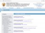 Руководство по внесению сведений в Реестр сведений о фактах деятельности юридических лиц (ЕФР)