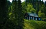 Дом в лесу: можно строить или нельзя?