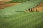 8 вопросов об уточнении границ земельного участка